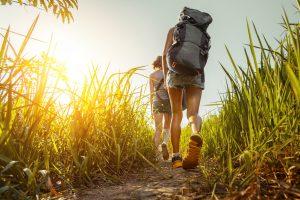 Two hikers walking through green lush meadow